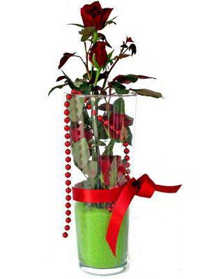 Tokat çiçek gönderme sitemiz güvenlidir  Cam yada mika içerisinde 9 adet kirmizi gül - sevdiklerinize özel