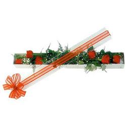 Tokat güvenli kaliteli hızlı çiçek  6 adet kirmizi gül kutu içerisinde