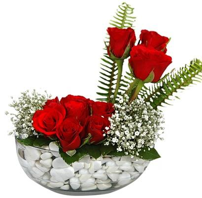 cam içerisinde 9 adet kirmizi gül  Tokat İnternetten çiçek siparişi