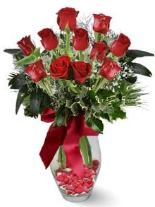 9 adet gül  Tokat yurtiçi ve yurtdışı çiçek siparişi  kirmizi gül