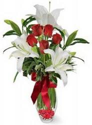 Tokat İnternetten çiçek siparişi  5 adet kirmizi gül ve 3 kandil kazablanka