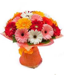 Renkli gerbera buketi  Tokat çiçek , çiçekçi , çiçekçilik