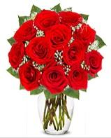 12 adet vazoda kıpkırmızı gül  Tokat çiçek yolla