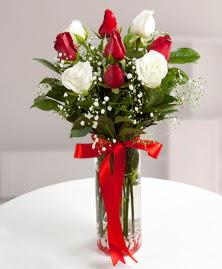 5 kırmızı 4 beyaz gül vazoda  Tokat çiçek gönderme
