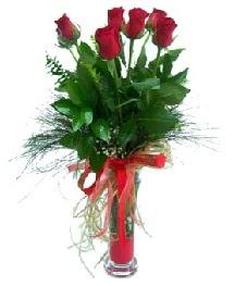 vazo içerisinde 5 kırmızı gül  Tokat çiçekçiler