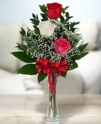 Camda 2 kırmızı 1 beyaz gül  Tokat çiçek servisi , çiçekçi adresleri