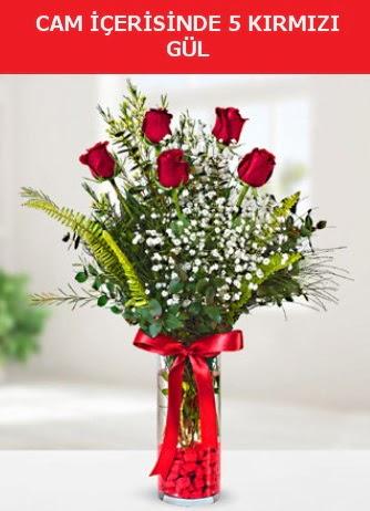 Cam içerisinde 5 adet kırmızı gül  Tokat güvenli kaliteli hızlı çiçek