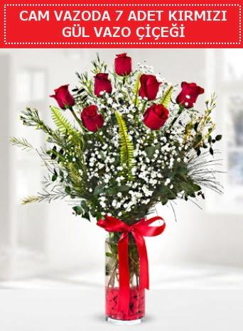 Cam vazoda 7 adet kırmızı gül çiçeği  Tokat cicekciler , cicek siparisi