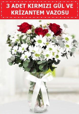 3 kırmızı gül ve camda krizantem çiçekleri  Tokat 14 şubat sevgililer günü çiçek