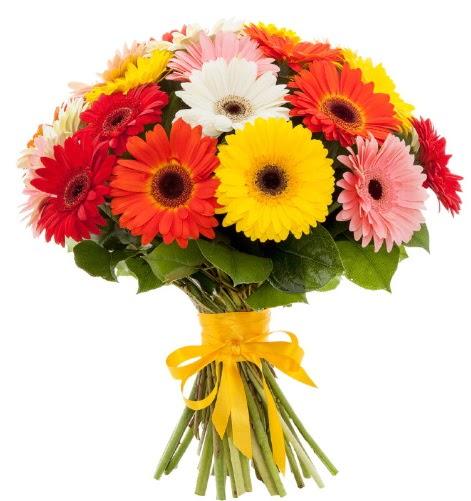 Gerbera demeti buketi  Tokat hediye sevgilime hediye çiçek