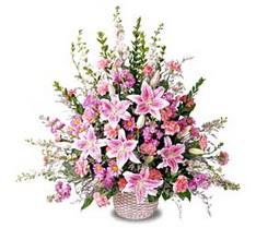 Tokat güvenli kaliteli hızlı çiçek  Tanzim mevsim çiçeklerinden çiçek modeli