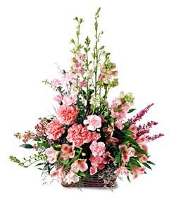 Tokat çiçek servisi , çiçekçi adresleri  mevsim çiçeklerinden özel
