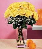 Tokat yurtiçi ve yurtdışı çiçek siparişi  9 adet sari güllerden cam yada mika vazo