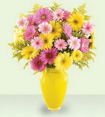 Tokat çiçek gönderme  cam yada mika vazoda kir çiçekleri özel