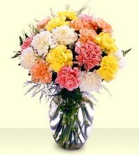 Tokat çiçek gönderme sitemiz güvenlidir  cam yada mika vazoda renkli karanfiller
