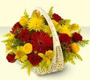 Tokat çiçek satışı  sepette mevsim çiçekleri
