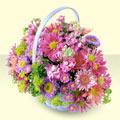 Tokat internetten çiçek siparişi  bir sepet dolusu kir çiçegi  Tokat cicekciler , cicek siparisi