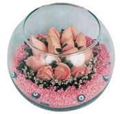 Cam fanus içerisinde 9 gül  Tokat çiçek mağazası , çiçekçi adresleri