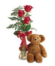 oyuncak ve güller tanzim   Tokat anneler günü çiçek yolla