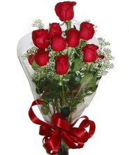 9 adet kaliteli kirmizi gül   Tokat çiçek siparişi vermek