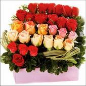 15 adet renkli gül ve cam   Tokat kaliteli taze ve ucuz çiçekler