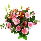 lilyum ve gerbera çiçekleri - çiçek seçimi -  Tokat 14 şubat sevgililer günü çiçek