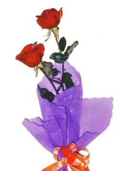 2  adet kirmizi gül buketi   Tokat çiçek online çiçek siparişi