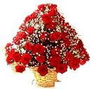 41 adet kirmizi gül sepette   Tokat çiçek online çiçek siparişi