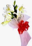 Tokat çiçek online çiçek siparişi  ince vazoda gerbera ve ayi