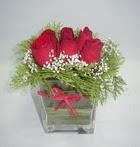 6 adet kirmizi gül camdadir   Tokat uluslararası çiçek gönderme