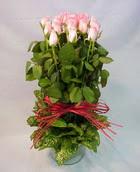 13 adet pembe gül silindirde   Tokat uluslararası çiçek gönderme