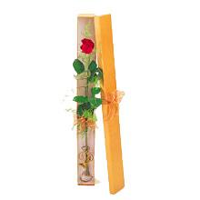 ince  kutuda  1  gül   Tokat uluslararası çiçek gönderme