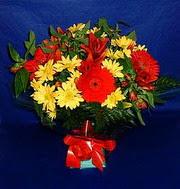 karisik halde mevsimsel  Tokat uluslararası çiçek gönderme