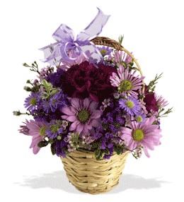 Tokat çiçekçi telefonları  sepet içerisinde krizantem çiçekleri