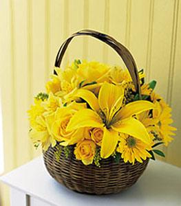 sepet içerisinde sarinin sihri  Tokat çiçek gönderme