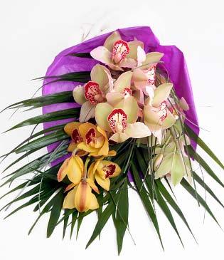 Tokat çiçek gönderme  1 adet dal orkide buket halinde sunulmakta
