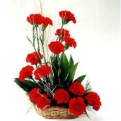 Tokat çiçek gönderme  sepet içerisinde 17 adet karanfil tanzimi