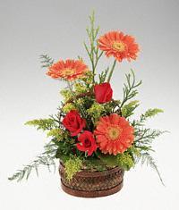Tokat çiçek gönderme  sepet içerisinde 3 gül ve 3 gerbera tanzimi