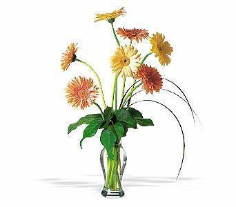 Tokat çiçek gönderme  ince cam vazoda 7 adet karisik gerbera