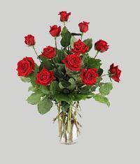 Tokat çiçek gönderme  11 adet kirmizi gül vazo halinde