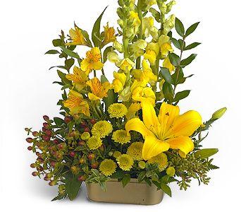 sarinin güzel görüntüsü aranjmani  Tokat çiçek gönderme