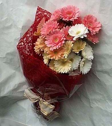 19 adet karisik gerbera buketi  Tokat çiçek yolla
