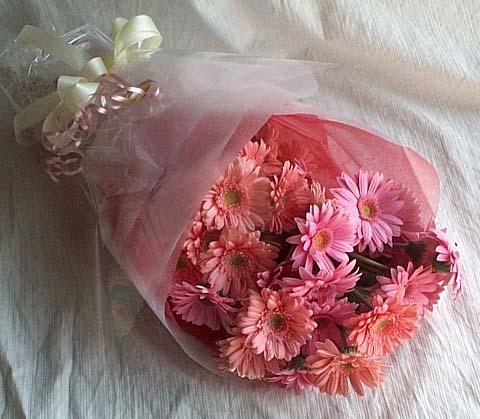 17 adet gerbera buketi  Tokat çiçek yolla