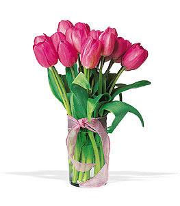 cam vazo içerisinde lale demeti  Tokat çiçek yolla