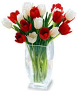 Tokat çiçek yolla  cam vazo içerisinde lale demeti ( lale bulunamadig