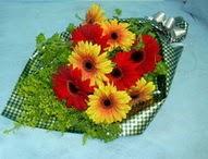 tül içerisinde gerbera çiçekleri 11 adet  Tokat çiçek yolla