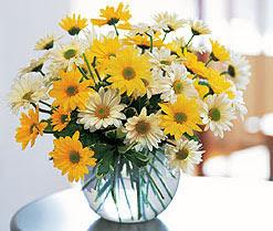 Tokat yurtiçi ve yurtdışı çiçek siparişi  cam vazo içerisinde 3 adet krizantem demeti