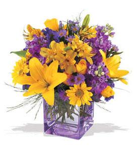 Tokat çiçek siparişi sitesi  cam içerisinde kir çiçekleri demeti