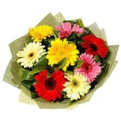 9 adet karisik gerbera demeti  Tokat çiçek siparişi sitesi