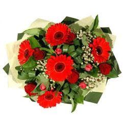 Tokat çiçek servisi , çiçekçi adresleri   5 adet kirmizi gül 5 adet gerbera demeti